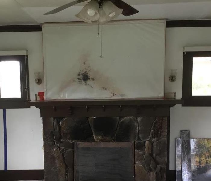 wall above living room chimney with visible water damage and heavy mold growth